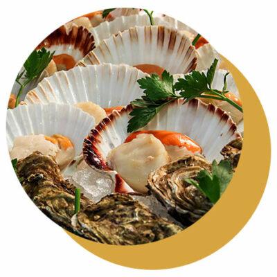 degustazione pesce